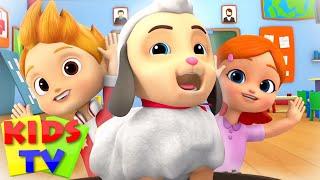 Mary had a little lamb | Nursery Rhymes & Baby Songs | Boom buddies | Kids Tv