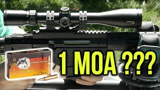 Can You Get 1 MOA Groups From Wolf Ammo