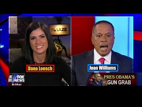 Dana Loesch OWNS  Juan Williams in Heated Debate on 2nd Amendment