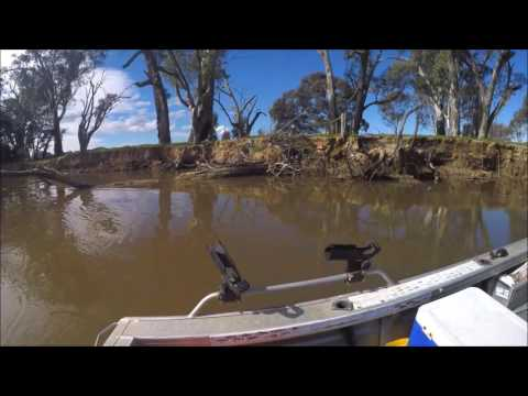 Only In Australia - Ferreting & Fishing on the Mighty Murray River