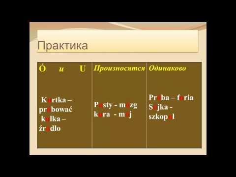 польского видео елена шепилова уроки слушать словарь
