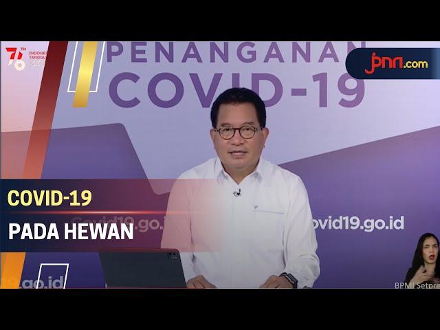 Satgas: Jangan Panik, Hewan Terinfeksi Covid-19 Tidak Menulari Manusia - JPNN.com