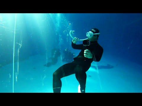 다이빙신 스노쿨색소폰 ㅋㅋ프리다이빙, Freediving ,다이빙신, Funnydiving, Funnyvideo