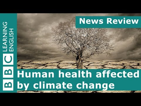 Human health affected by climate change: BBC News Review