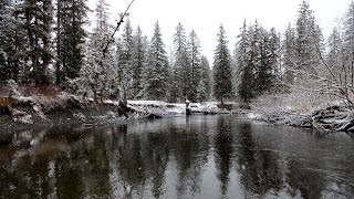 Mystery Creatures of the Alaskan Wilderness : Documentary on Unexplained Creatures in Alaska