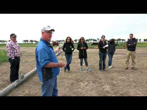 Alberta Irrigation history, progress & promise