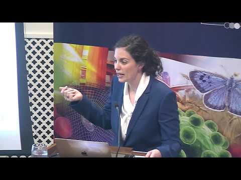 'Moral outrage in the digital age' with Prof Molly Crockett - YouTube