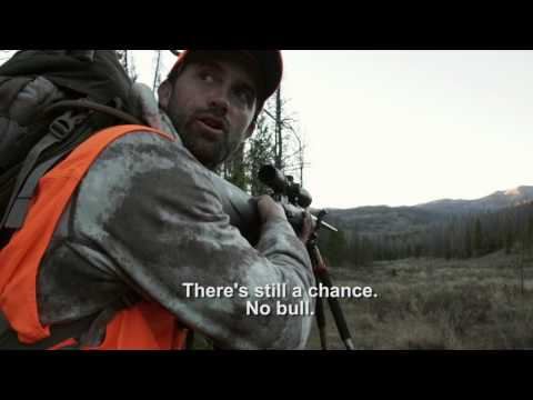 """Colorado Elk Hunting with a Rifle 
