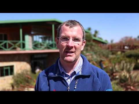 Travel Guide Ngwenya Glass Factory Swaziland