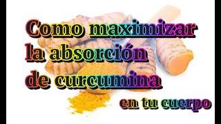 Como maximizar la absorción de la cúrcuma, y su ingrediente activo la curcumina, en el cuerpo