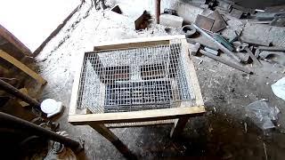 Клетка изолятор для новых кроликов