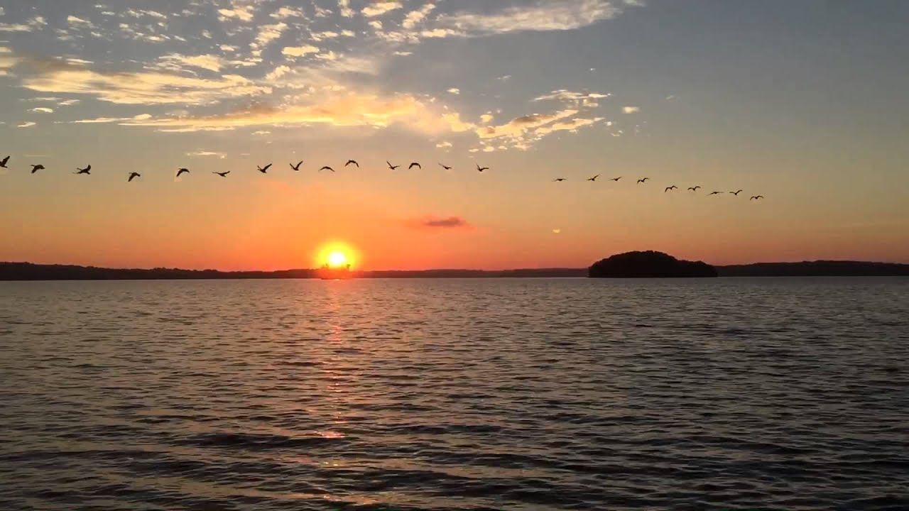 Morning sunrise with geese inflight on percy priest lake for Morning sunrise images