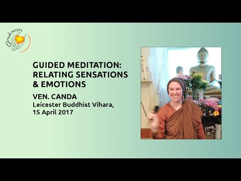 Guided Meditation: Relating Sensations and Emotions