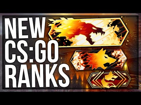 NEW CS:GO RANKS (RANK UPDATE)