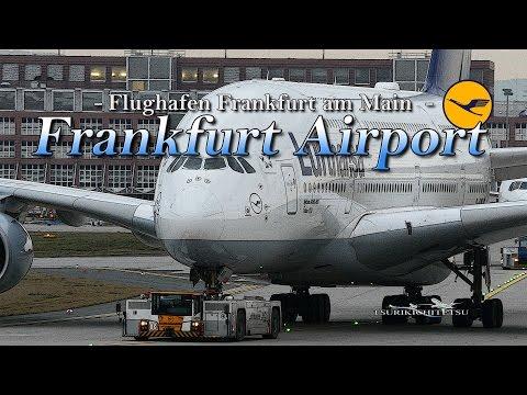【4K】1Hour Spotting at Frankfurt Airport (FRA)#1 February 7, 2016