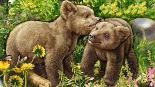 Стихи про лесных животных с картинками