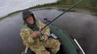 Риболовля на озері Нобель та річці Прип'ять