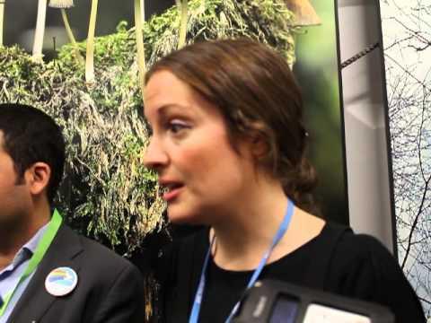 Liz Gallagher, E3G on COP19 Finance agreement
