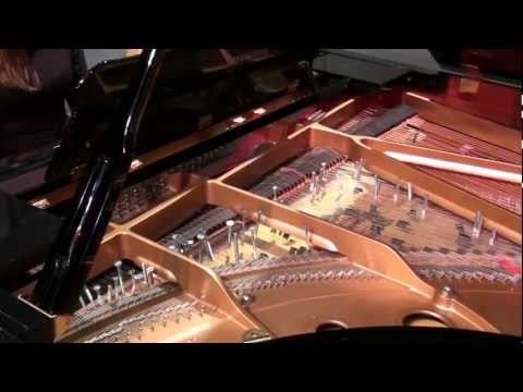 John Cage - Sonata V (from Sonatas and Interludes) - Inara Ferreira, prepared piano