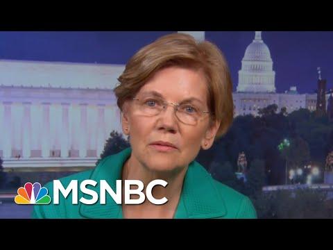 Sen. Warren: President Donald Trump SCOTUS Nominee Is 'A Political Animal' | The Last Word | MSNBC