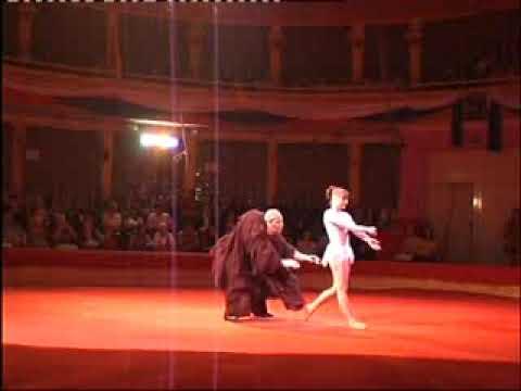 Акробатические Сексуальные Этюды Молодой Циркачки На Любовном Свидании