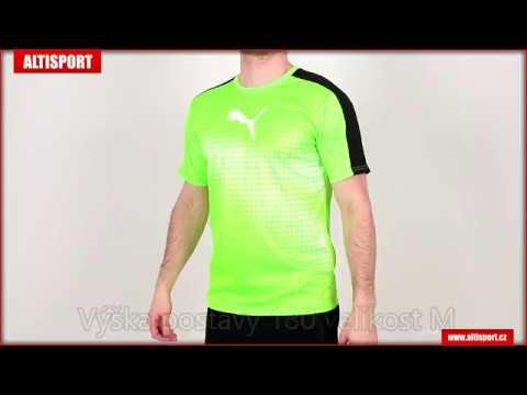 pánské triko s krátkým rukávem puma it evotrg graphic tee 65517451 green  geckoblackwhite 56cd9a5369