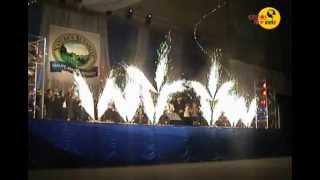 Фонтаны, вертушки, вспышки, конфетти (Gelios пиротехника)(http://geliosfireworks.com/ Пиротехническая фирма