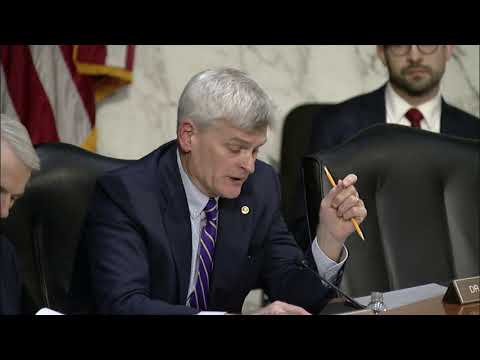 Cassidy questions Council of Economic Advisers chairman about potential steel tariffs