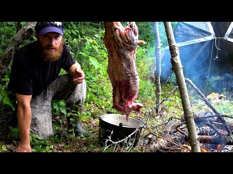 WILD BEAVER, Trap, Eat, Cook in the FOREST (StarttoFinish)