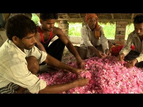India's perfume capital