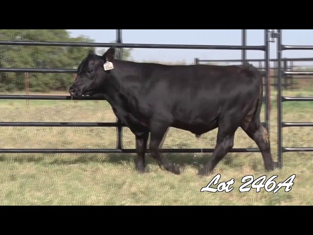 Pollard Farms Lot 246A