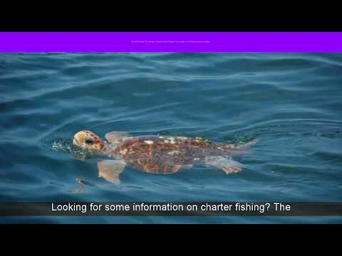 Boynton Beach Fishing Trip Packages | Fl Fishing Vacation Packages | Crown Fishing Charters