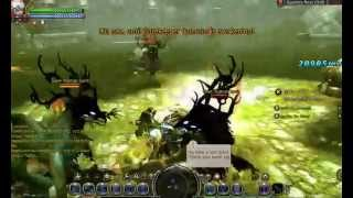 Dragon Nest private server / Gigantes Nest (Hell) /