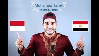 Video Ya Habibal Qolbi | محمد طارق)  يا حبيب القلب _ Mohamed tarek) download MP3, 3GP, MP4, WEBM, AVI, FLV September 2018