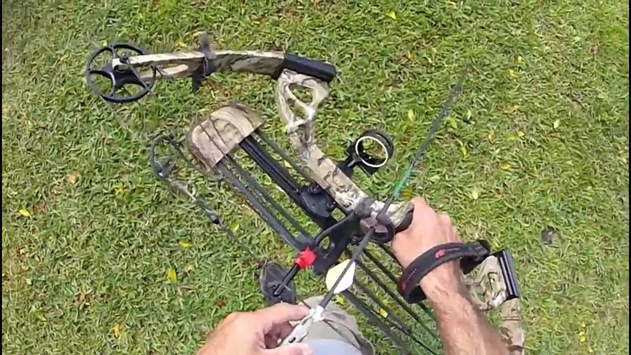 Pse Stinger Compound Bow 30 Yard Tree Stand Shots Youtube