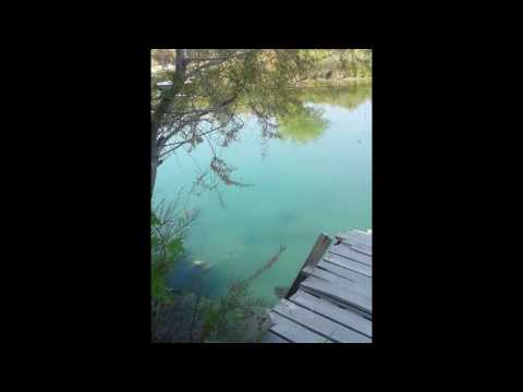 Magnificent nature and bird sounds in Turkey