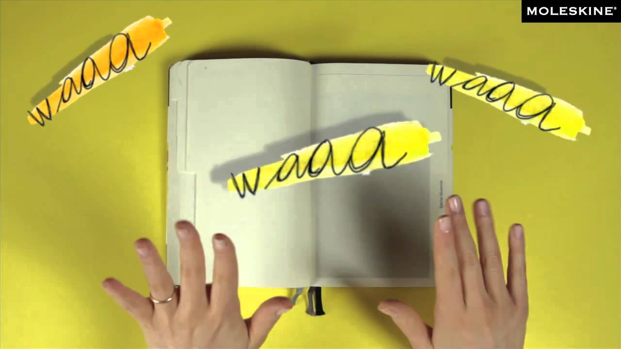 30414fa5bd36c7 Moleskine Passions - Baby Journal - YouTube