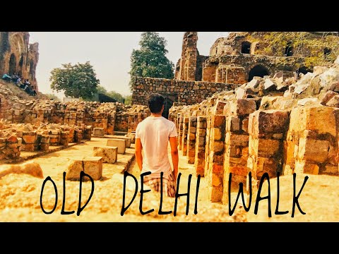 OLD DELHI WALK|FOODIE|TRAVEL|RED FORT|JAMA MASJID|MIRZA GALIB HAVELI|KARIM|FEROZ SHAH KOTLA FORT