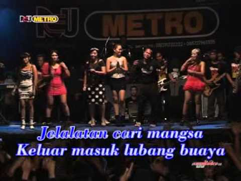 Om New METRO - BRONDONG TUA -  NEW METRO FEMINA [karaoke] Travel Video