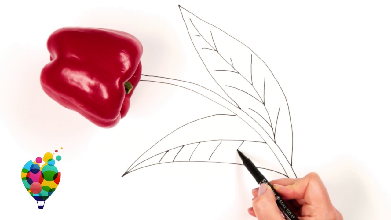 Totally Awesome Food Art Relaxing Video Drawing Ideas Using Fruits