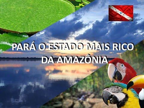 PORQUE INVESTIR NO PARÁ O ESTADO MAIS RICO DA AMAZÔNIA.