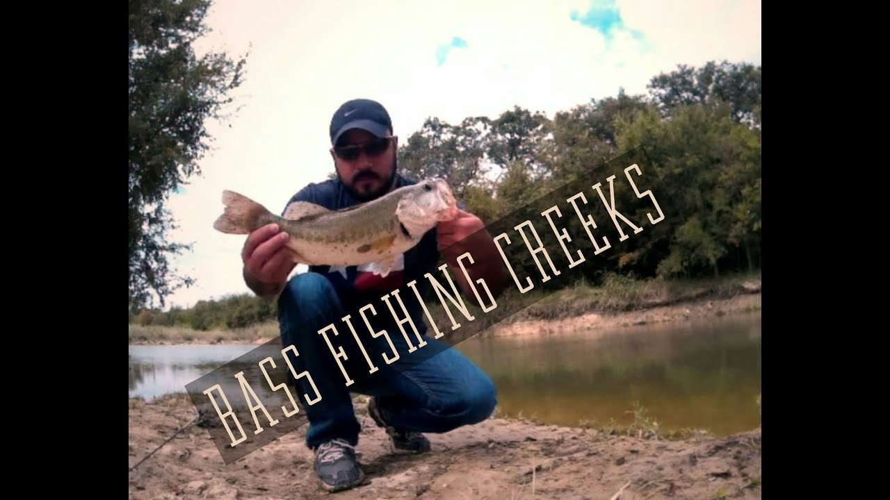 Bass fishing creeks in san antonio youtube for Bass fishing in san antonio