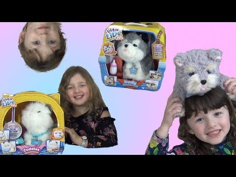 Little Live Pets Cute Little Kitten and Puppy Toys! Fun play with Ava Isla and Olivia