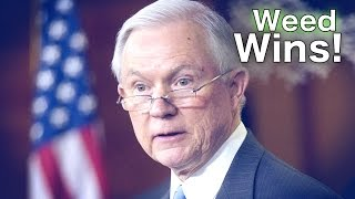 Jeff Sessions Backs Down From Fight Against Marijuana Free HD Video