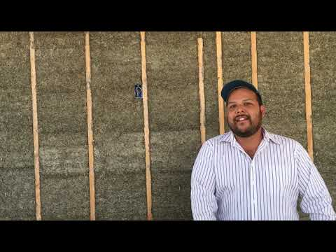 1st Permitted Hemp house in Southern California