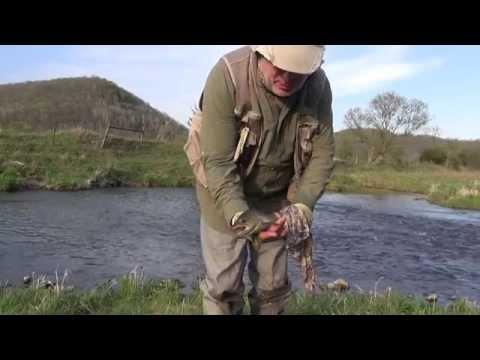 Spring 2015 Driftless Area Highlights