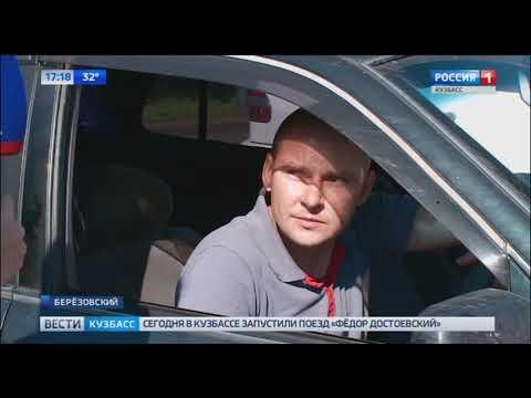 Терроризируют город: жители Березовского пожаловались на коров
