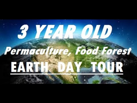 #EarthDay2017 #Permaculture #Garden Tour: 3 Year Old Food Forest