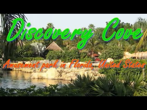 Visiting Discovery Cove, Amusement Park in Florida, United States