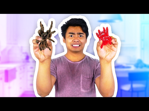 GUMMY FOOD VS REAL FOOD!
